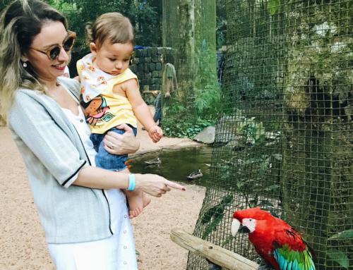 Foz do Iguaçu com bebês: dicas e passeios